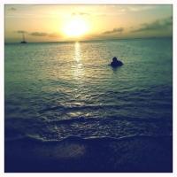Ocean's Swim.  (Novel Excerpt)